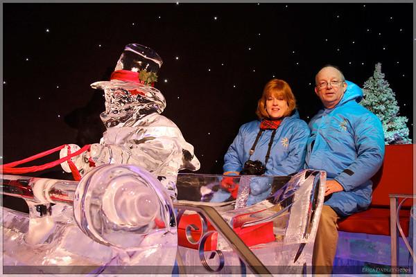 2009 Gaylord Christmas
