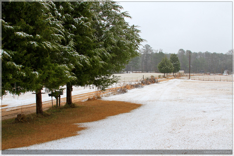 It actually snowed on Christmas Day in AL!!! It was the first time this had happened in the history of keeping weather records!