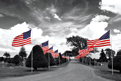 May We Never Forget..., Flags on Memorial Day in Winner, South Dakota.