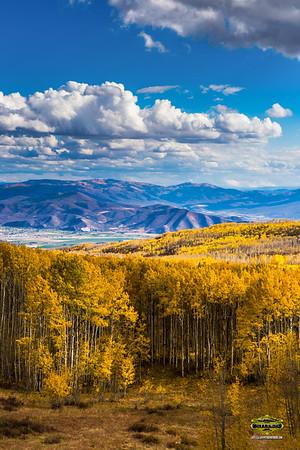 Jeff Petersen Studios ParkCity Utah Aspens 24x36Logo-0020B