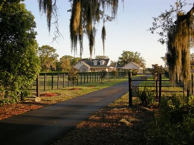 Home at Morning 4/16/2007