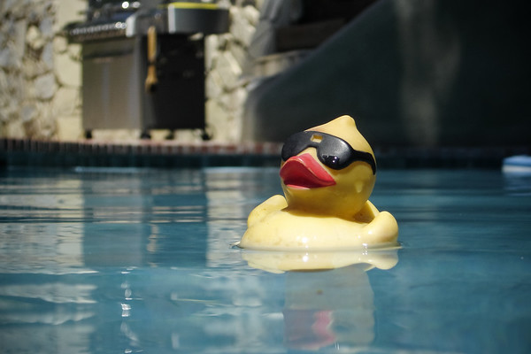 Our little rubber ducky thinks he is so cool