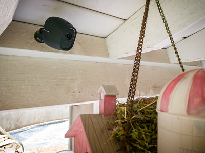 Valerie asks if we can try to capture the eggs hatch, so I mount one of our wireless security cameras over the nest