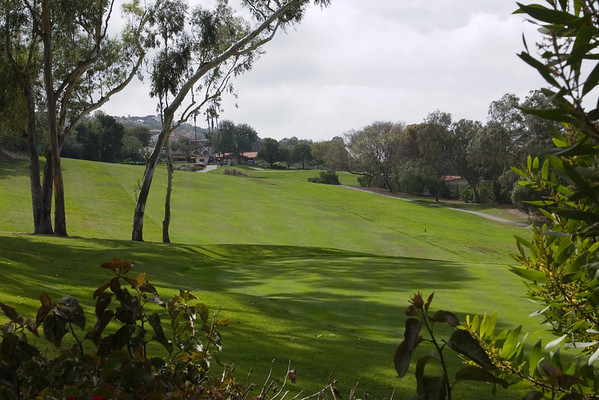 Who knew we'd reside walking distance from PV Golf Club?