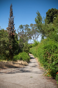 I first noticed Paseo del Sol fire road while running on Via Campesina, but have only been on it once before.  This shot is looking back towards the trailhead, now just out of view.