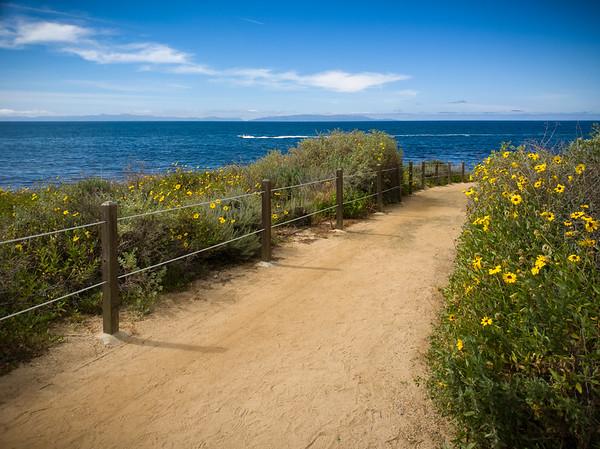 Catalina on the horizon