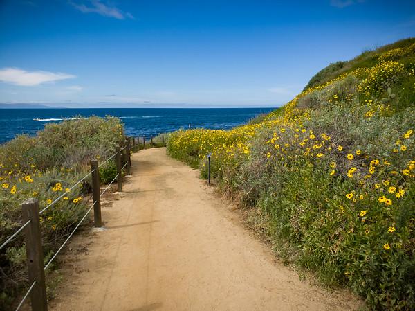 Terranea Trail