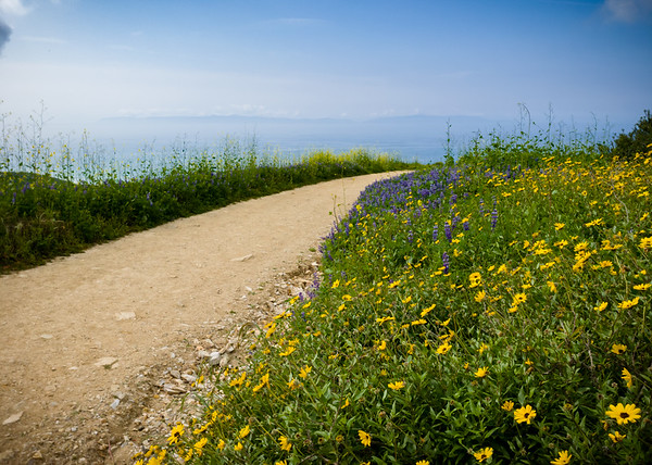 Santa Catalina Island is faintly visible on the horizon