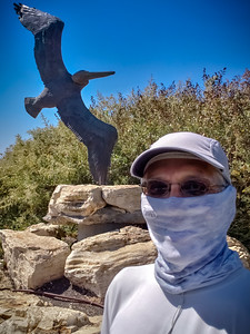 S9's selfie cam does not like masks...chooses to focus on the statue in Pelican Cove Park