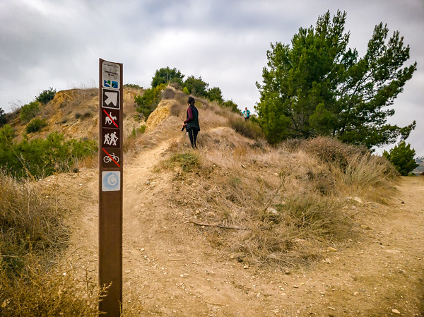 I skipped the coastal stretch of Abalone Cove during my morning run, so we head there now via Smugglers Trail.  Unfortunately we must first wait for someone hiking in the opposite direction (since there's no way to social distance on such a narrow trail).