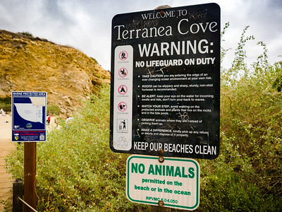 I didn't realize no animals are permitted on the beach or in the ocean at Terranea Cove