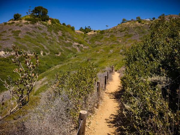 I think Mariposa Trail has finally leveled off