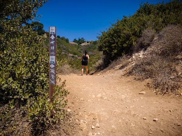 We face another choice of trails, but continuing upward.  Mariposa Trail will take us on a loop of this reserve.