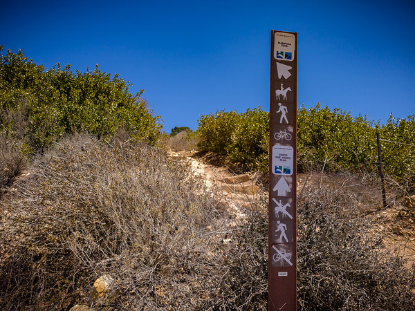 Cristo Que Viento Trail just keeps going up into the Palos Verdes Hills.  We decide to take the loop.
