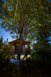 Valerie and I decide to check off another previously unexplored stretch of Palos Verdes' 42 miles of public trails by driving to the Forrestal Nature Reserve on the far side of the peninsula.  Walking up to the trailhead from where we park, we notice a really cool treehouse.