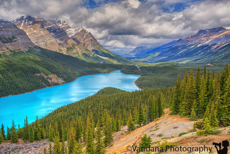 June 24, 2016 - Peyto lake, Banff National Park  Can't get enough of the Turquoise blue lakes in Banff ! Such beautiful places !   Trip to Peyto lake, Columbia Icefields, a walk on the Athabasca glacier, Glacier skywalk,  enroute to Jasper today.