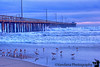 January 23, 2016 - The Avila beach pier at sunset<br /> <br /> so many pictures taken here, such a beautiful place, still processing and uploading trip pictures !