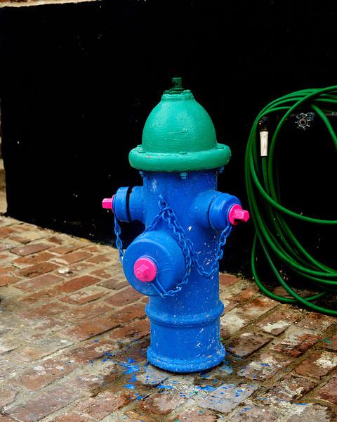 Williams Street Fireplug