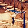 Hanging Blue