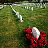 Regimented death