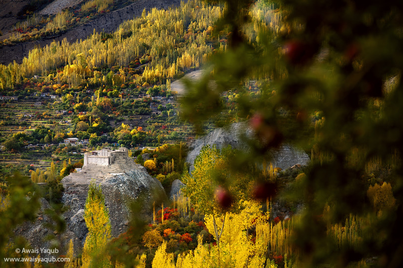 Baltit fort seen from Apple Orchard