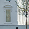 The Presidential Hydrant (Washington, DC)