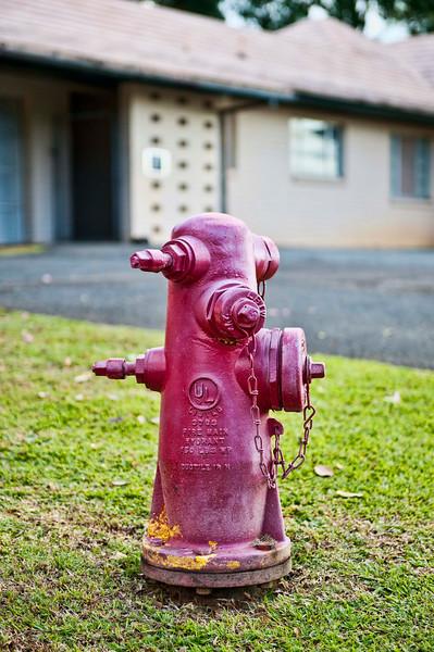 Punchbowl Cemetery, Oahu