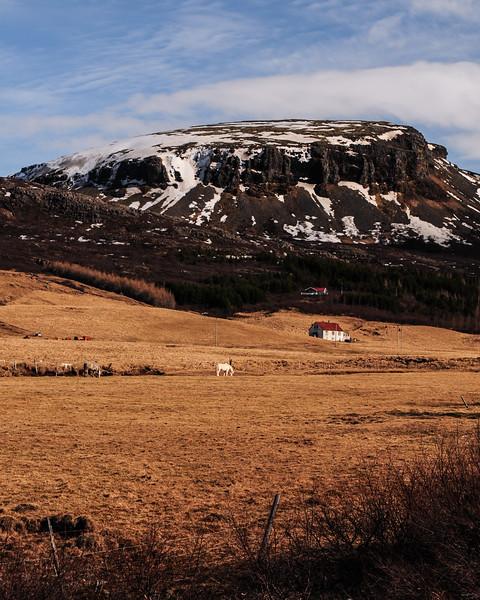 Iceland 2014-26