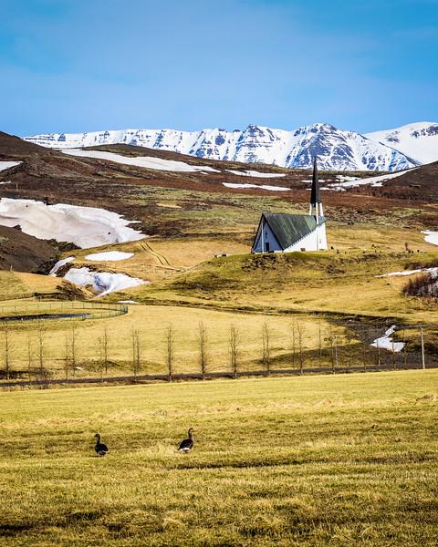 Iceland 2014-42