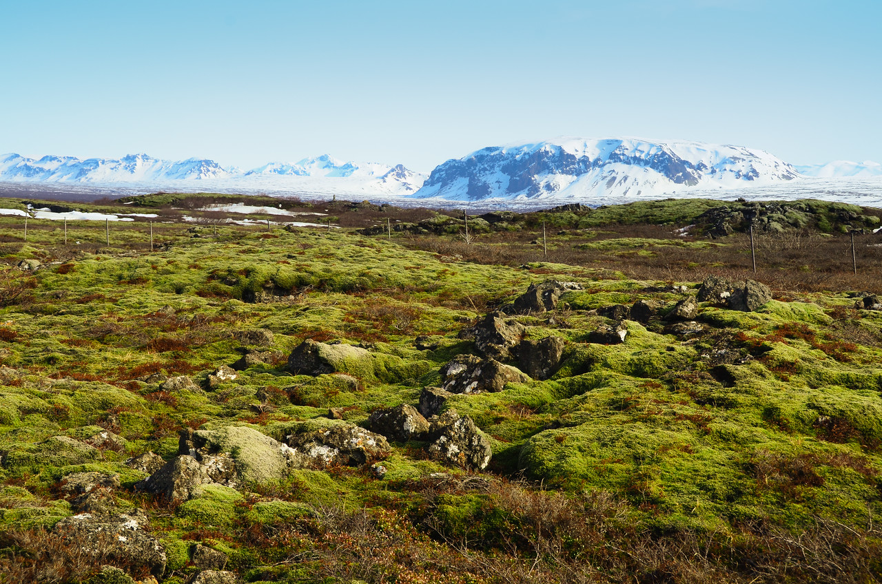 Iceland 2014-46