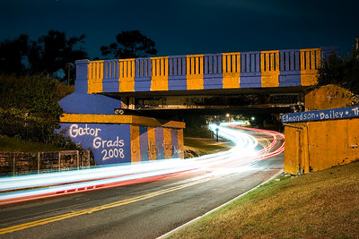 Graffiti Bridge Gators