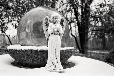 angel+float-fp4-29-t0029