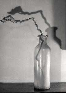 vase+twig-hp5_1-1