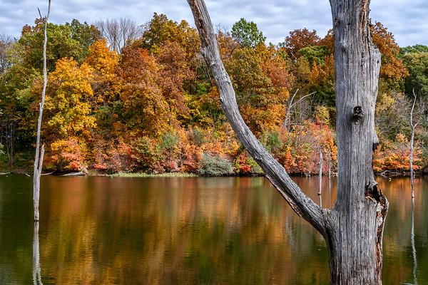 Clinton State Recreation Area