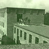 Man with horse on roof of factory, ca. 1910.  AP