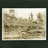 Logging camp in Kingston, NY, ca. 1890.  Ptgr. William HJ. Longyear.  MP AP