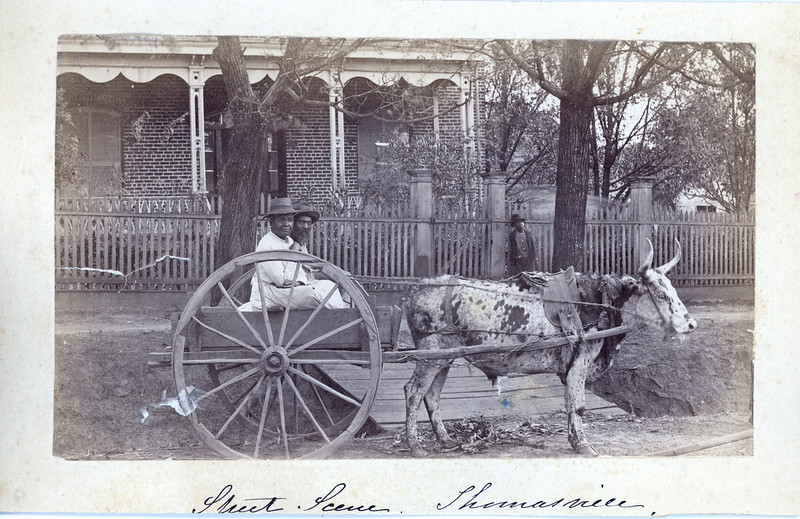Street scene, Thomasville, NC, ca. 1890.  MP SP