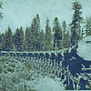 Logging truck with logs, ca. 1890.  AP.