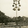 Bird houses made of gourds on a pole, bluebirds, 1941.  RPPC.