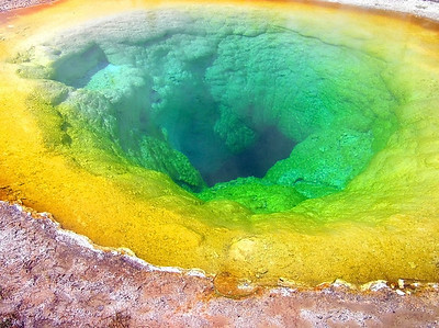 Morning Glory Pool Yellowstone