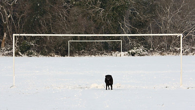 Shadow in goal!