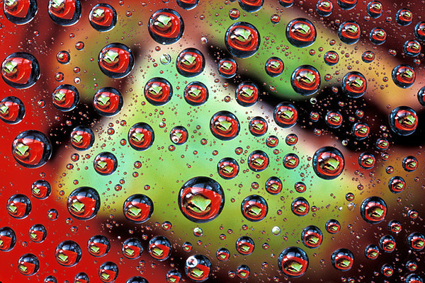 #68 Frog in Water Drops