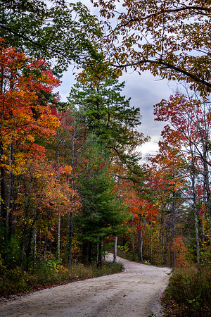 Red River Gorge - Stanton, Kentucky