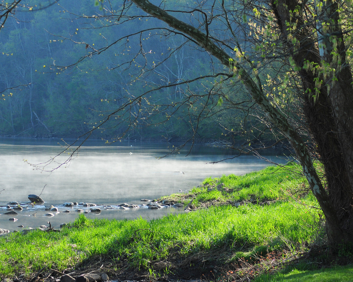 Mist on the River in Northeast Tennessee