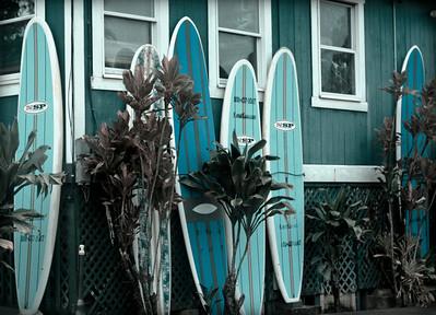 Princeville, Kauai May 2008