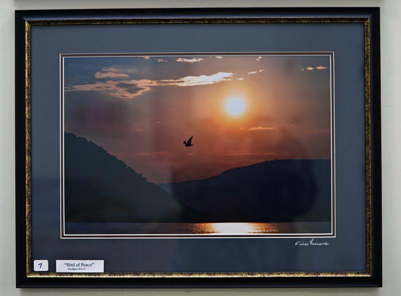 Bird of Peace # 1