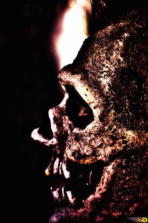 A Skull's Profile
