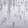 Schaalsee_0312__LEB1906