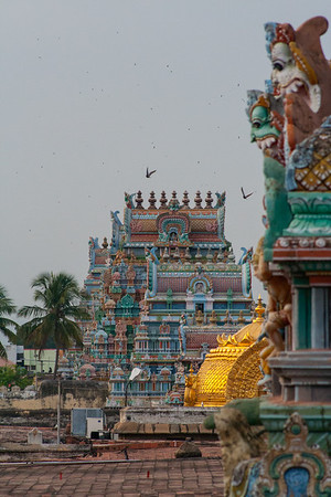 Gopura and the Golden Dome Above The Vimanam