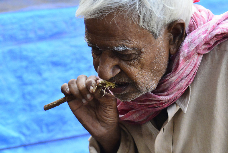 A man brushing his teeth with a twig from the Neem tree.